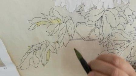 跟乐知轩主(耿老师)学工笔画——《牡丹》(1)