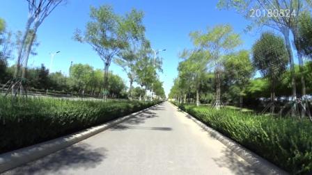 骑行天津中新生态城