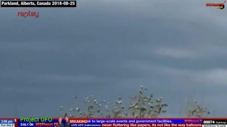 【UFO】国外组织报道的UFO视频183(内含精彩片段)