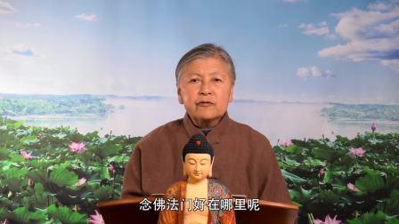 无量寿经 第33集 刘素云老师复讲