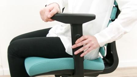【蒂凡利普】健康办公——仿脊椎人体工学椅