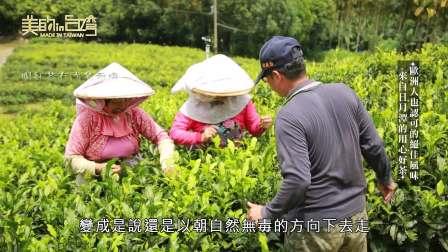 中天綜合36台 美的in台灣 友創農業