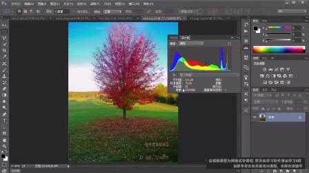 PS教程 入门视频教程  第17课  理解直方图/RGB通道信息