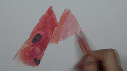 上海八哥美术《胡说胡画》精品手绘课堂彩铅画作品--西瓜