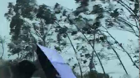 2女孩过马路被山竹台风打伤