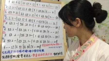 零基础自学葫芦丝《嘴巴嘟嘟》七孔葫芦丝教学视频