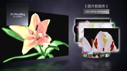 索尼 Xperia XZ3 HDR OLED 显示屏,融合Bravia电视技术