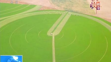 内蒙古·赤峰阿鲁科尔沁旗 百万亩牧草丰收 治沙致富两不误 180920