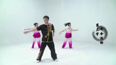 武术院系列教学视频之全国中小学生武术操《英雄少年》_高清