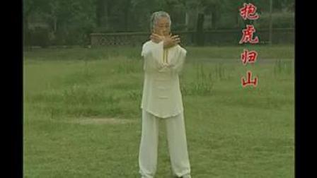 扎西:杨式传统太极拳85式完整示范 标清(270P)