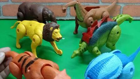 宝宝育儿益智动画片:动物队PK恐龙队