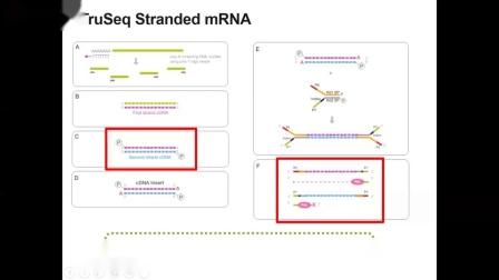 RNA Sequencing Part II Kits-20181115