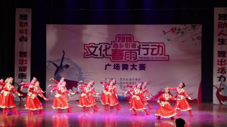 鸿雁-深圳市宝安区西乡 广场舞大赛
