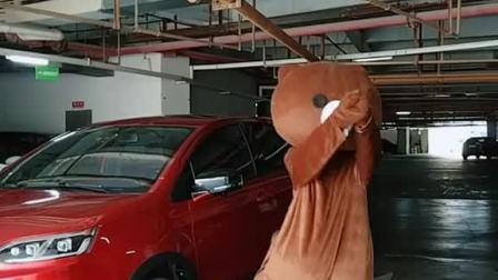 老板说小五人气高😄让小五抢先试驾公司生产的刺猬汽车🚗