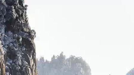 2018年11月24日 新教育•爱研会呱呱活动总第253期 讲座部活动  杨宏杰老师讲座主题:好课是设计出来的——初中数学课堂教学的几点思考