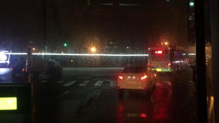 奶咖拍摄 - 161区间 苏州公交 海格客车2-4905 星华街游客中心首末站→苏州站北广场西公交枢纽