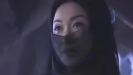 幻影神针:温碧霞回忆起仇人诛易家九族,自己遭火烧的往事