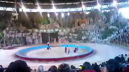 杭州野生动物世界马戏表演-国语720P