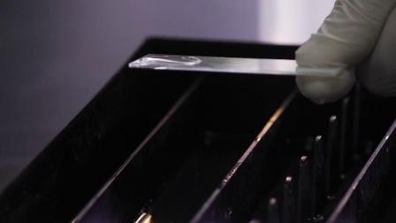 贵州美鑫达医疗科技有限公司--冰冻切片直接免疫组化操作示教片