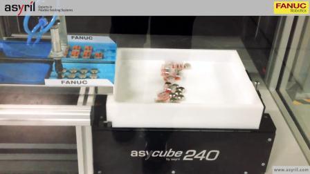 Asycube 240与Fanuc并联机器人_两种不同零部件的混合送料