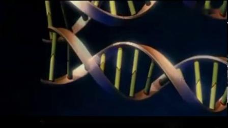 人类为什么不能长生不老 科学家给出解释 涨知识了
