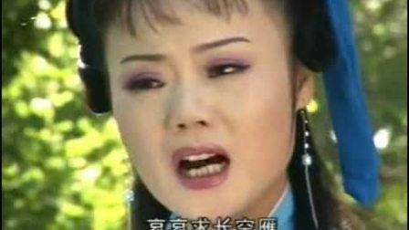 庐剧《苦菜花》  电视版   主演:吴南野、陈应兰、季云云、 刘长芳、张承芳、张丽