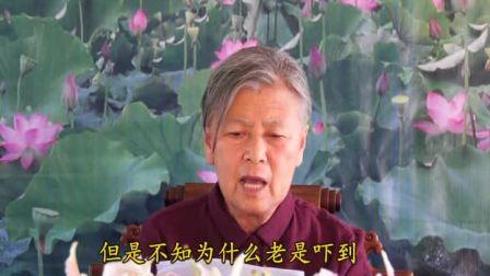 网络学佛答疑上集  刘素云居士