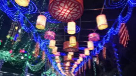 2019年元月初二惠州西湖夜赏花灯