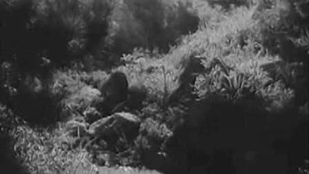 电影《三八线上》音乐片段(2)