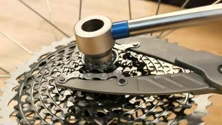 Park Tool - CP-1.2 拆卸飞轮用/链条夹钳