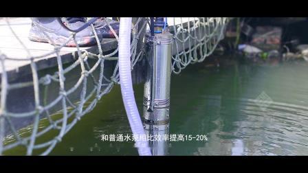 浙江大元泵业股份有限公司——圣诺文化