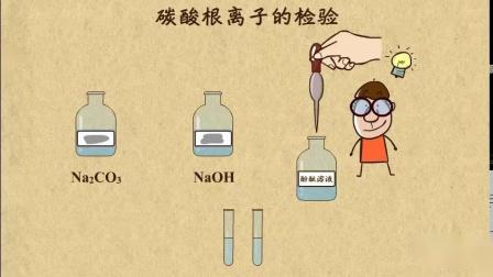 碳酸根离子的检验