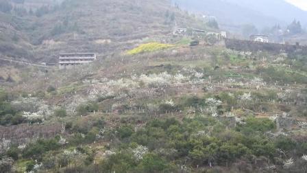 2019年3月5-10日-徒步三峡