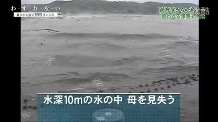 纪录片:わ・す・れ・な・い 东日本大震灾155日记录