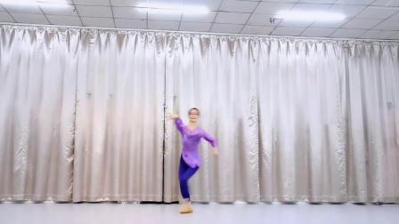 芸门小娟原创古典舞身韵基础组合穿手《双面燕洵》