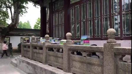 """进门就能享受""""大自然的交响乐"""" 南京一""""虫子""""书店成网红打卡地(视频)"""