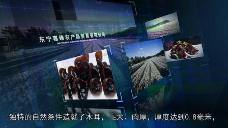东宁黑木耳宣传片