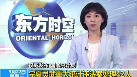 新闻直播间 2019 权威发布 国家统计局 宁夏灵武重大统计违法案42人