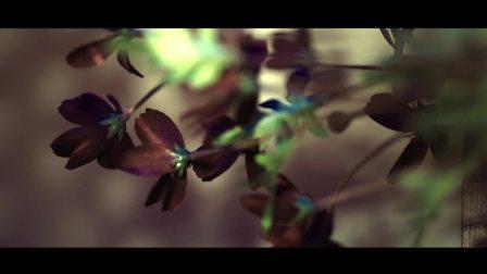 鹿晗《体会(Nature)》MV花絮