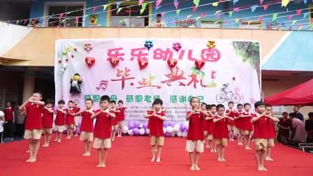 乐乐幼儿园2019年毕业典礼