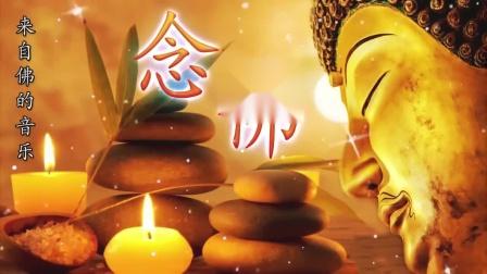 每天聆听佛教音乐可以帮助您改善健康状况。纯正的佛教音乐 🙏 来自内心的佛教音乐 - 佛教歌曲 🙏 来自佛的音乐 - 纯正的佛教歌曲