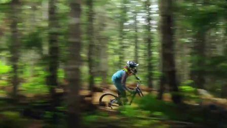 FRW辐轮王世界十大山地车品牌排行榜单车自行车