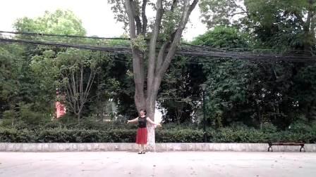 孝感晨练广场舞(最新自编)《梦里彩蝶》(正、背面演示)