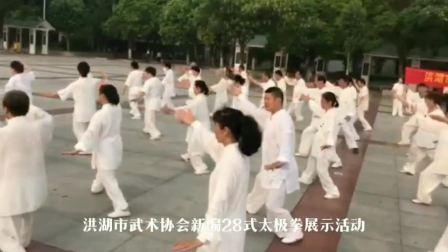 洪湖市武术协会·新编28式太极拳展示