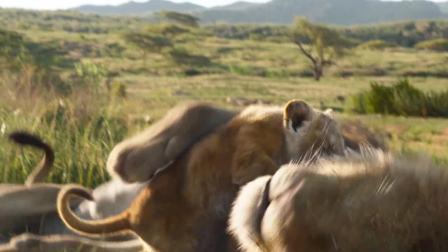 """《狮子王》年度爆款横扫第一,用""""狮力""""圈粉"""