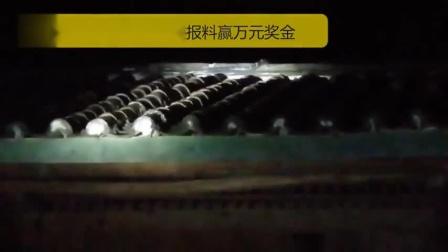 毛骨悚然!2.7米长剧毒眼镜王蛇霸占云南一村民家房顶,吓坏一家老小