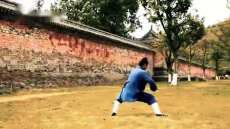 武当道家弟子龙华剑,身行剑走潇洒飘逸,让人看了也想学