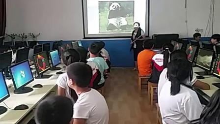 冀教版三年级上册第2课 画大熊猫-李老师优质课视频(配课件教案)