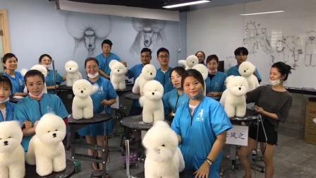江苏宠物美容学校哪个好?【一诺宠物美容培训机构】一诺宠物美容培训学校是一所专业正