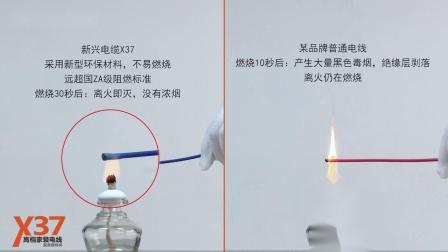 新兴电缆:X37-耐火性能实验